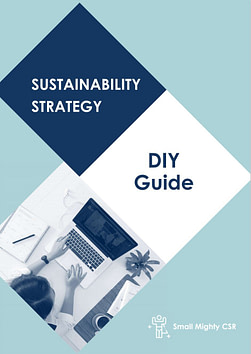 Cover image of DIY guide